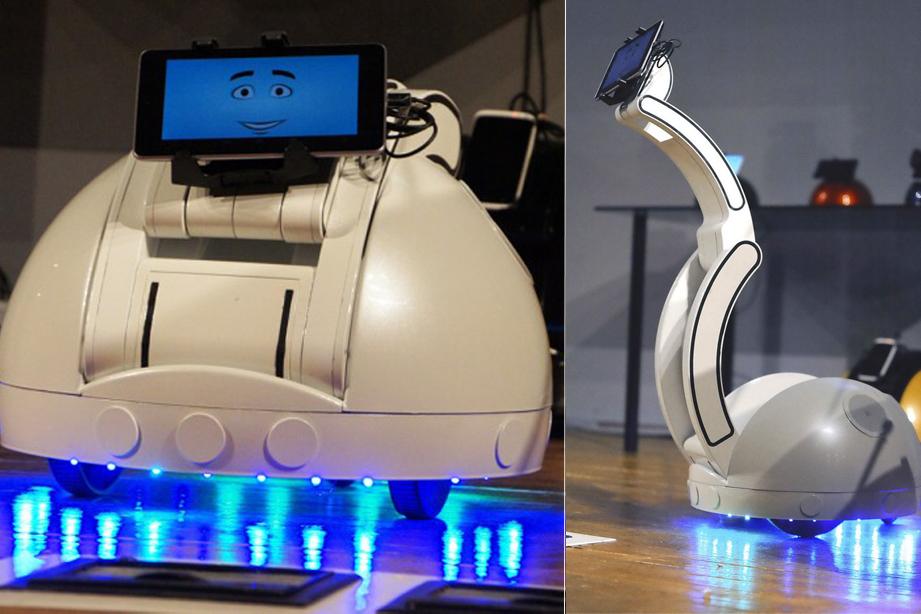 Робот Swan