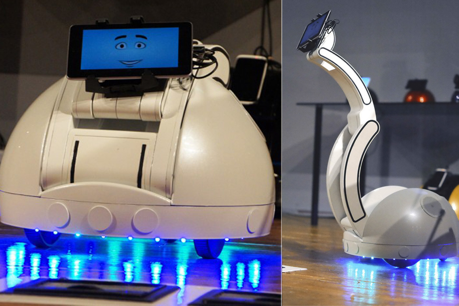 Robot Swan